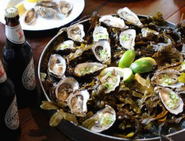 All You Need To Know About Native Oysters