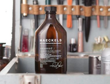 Haeckels at Hostem