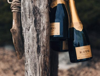 Krug Festival – Into The Wild