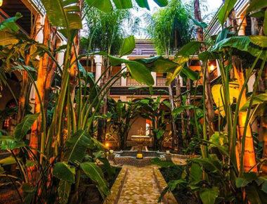 Josh Katz's Marrakech