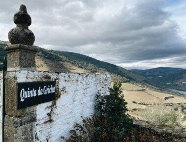Wine: Top Portuguese Vineyards